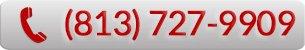 Call (813) 727-9909